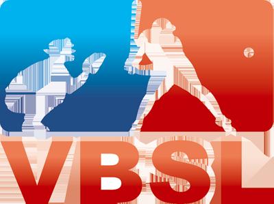 Vervoeg de Raad van Bestuur van VBSL vzw – 2 vacatures