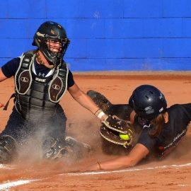 Belgian Series Softball en Baseball dit weekend van start